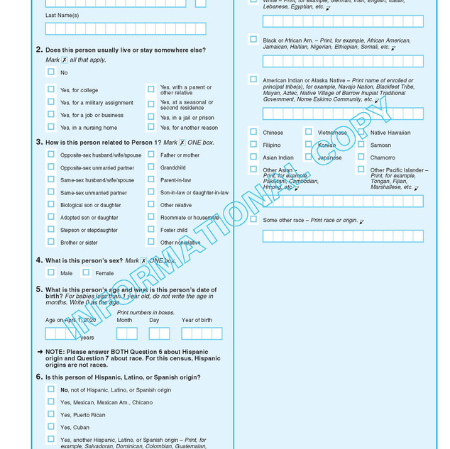 2020-informational-questionnaire_Page_07