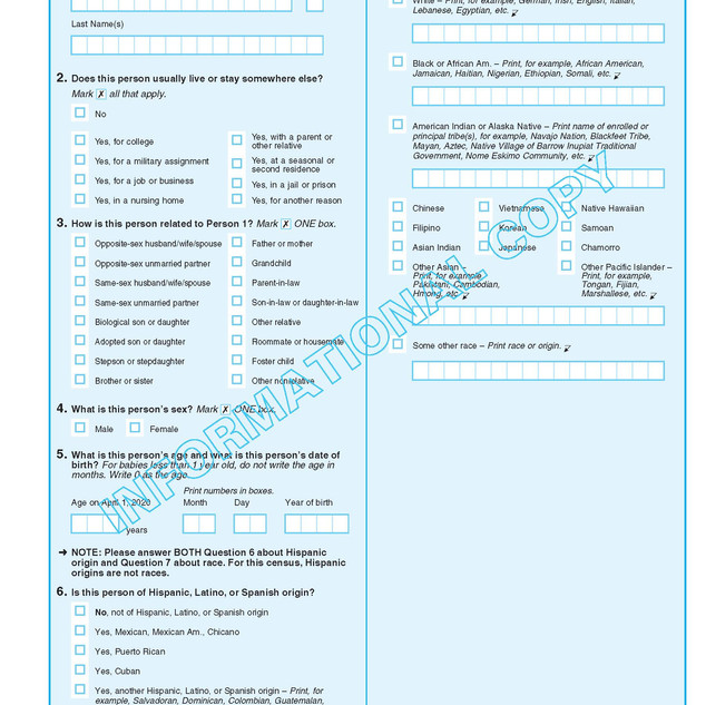 2020-informational-questionnaire_Page_05