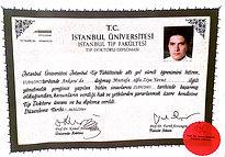 diploma - Sayfa 1.jpg