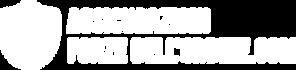 Logo Sito Assicurazioni FDO (W).png
