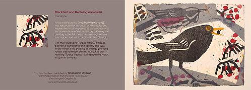 6x Blackbird and Redwing on Rowan