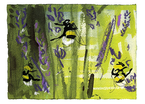 White-tailed Bumblebees & Lavender