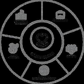 Circulo dimensiones BIA.png