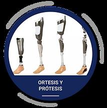 ortesis y protesis-02.png