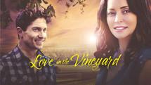 Love In The Vineyard (Heart Felt) | 2015)