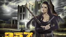 .357 Six Bullets For Revenge | 2012