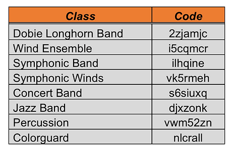 Google Class Codes Image.png