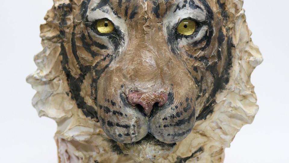 月を知る-虎