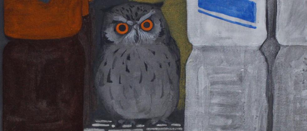 Owls山根旭.jpg