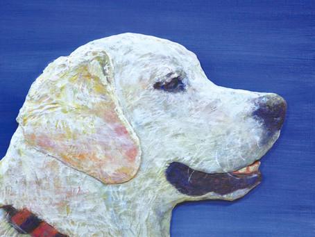 壱岐雅信展 –犬のまなざし–