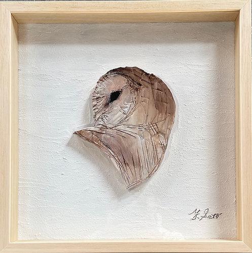 drawing relief-メンフクロウ-