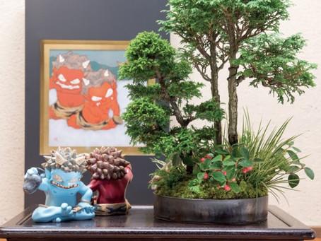 開廊20周年特別企画 bonsai 瀧下和之 山田香織 2人展
