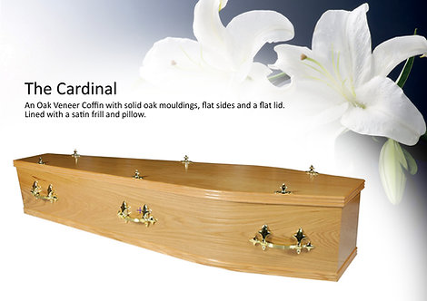 Cardinal oak veneered coffin