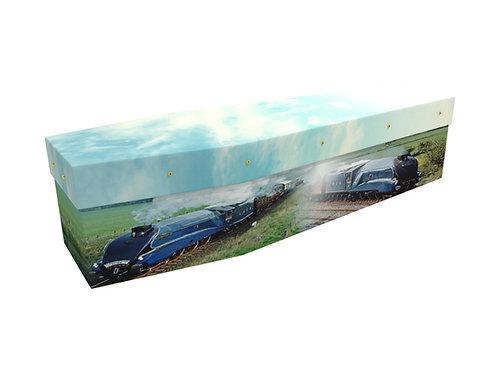 Bespoke Cardboard Coffin