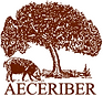 aeceriber.png