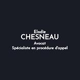 ELODIE CHESNEAU.png