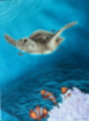 Crop marine skilpadde (1).jpg