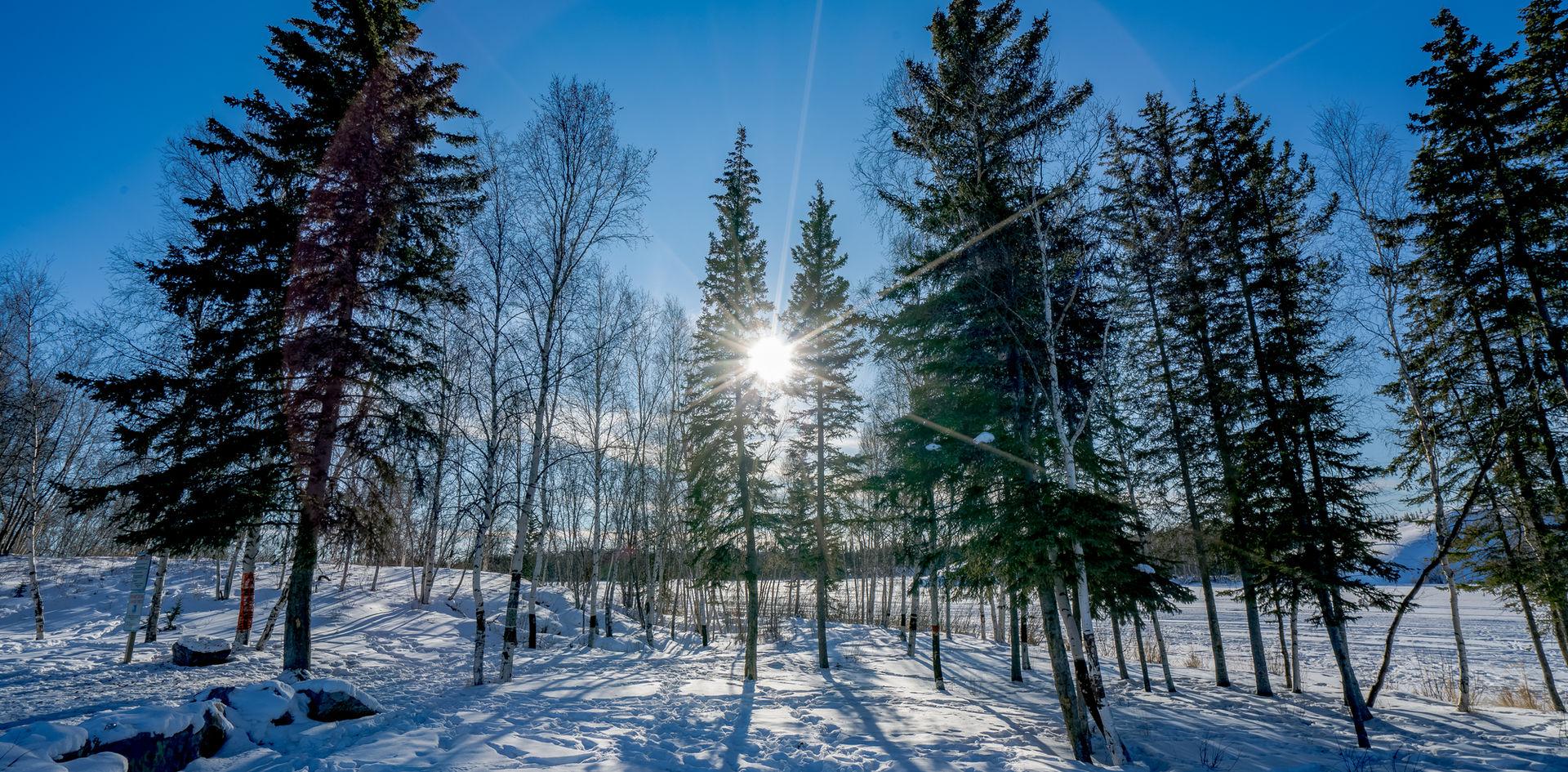 Yellowknife River Sunny Days