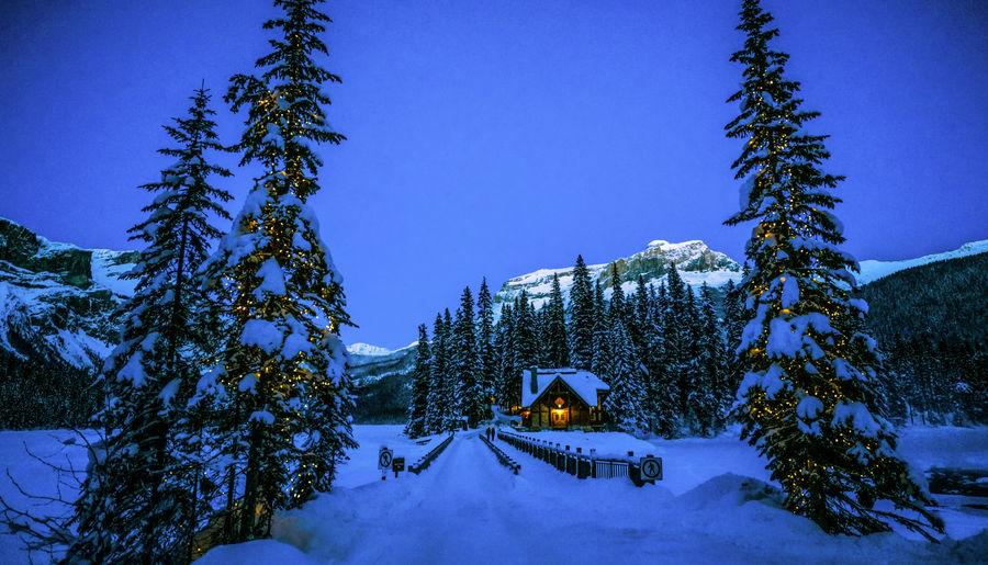 Winter Cozy Cabins