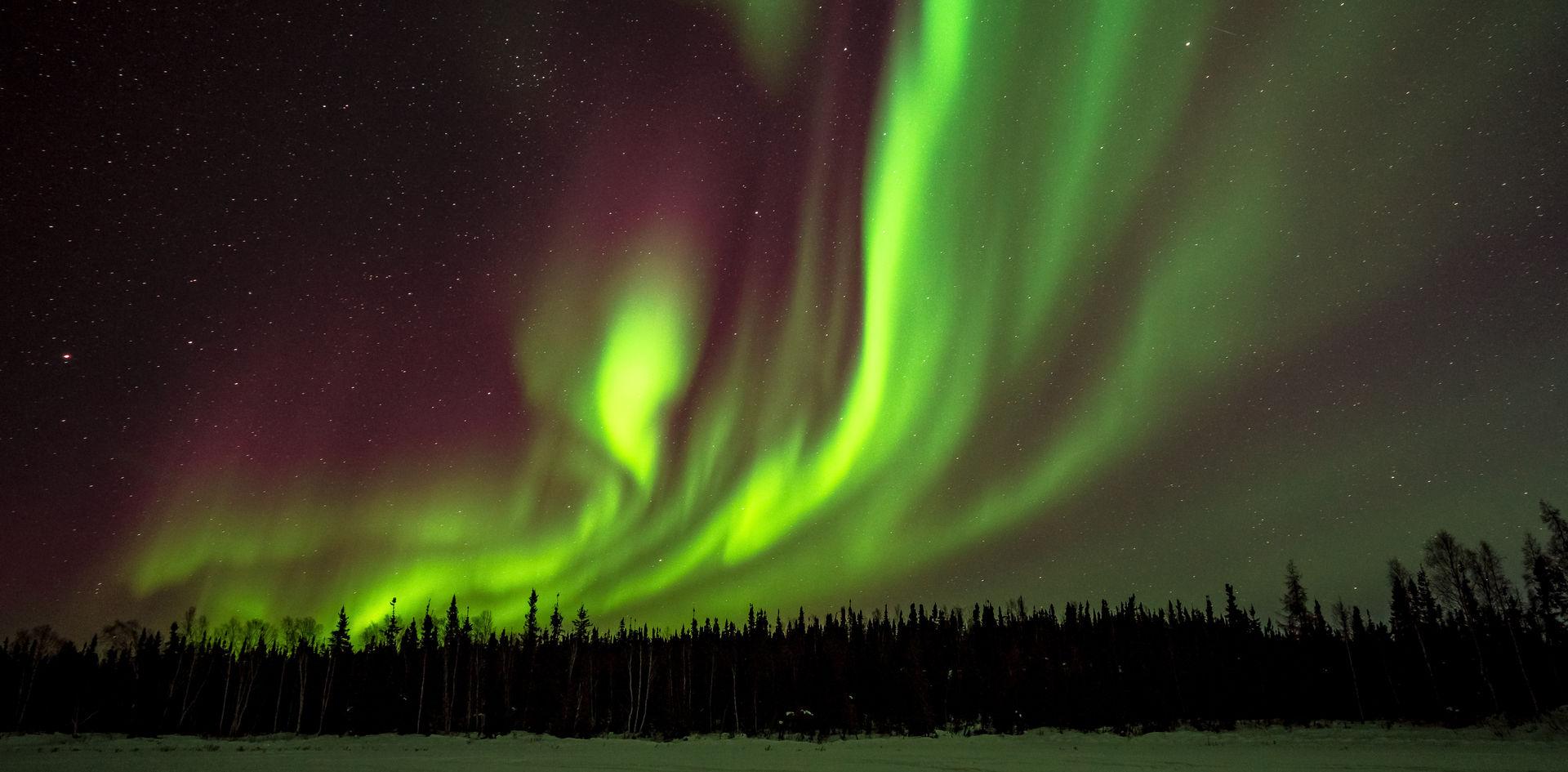 Wild Aurora Skies