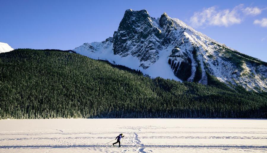 Cross-Country Ski Trails