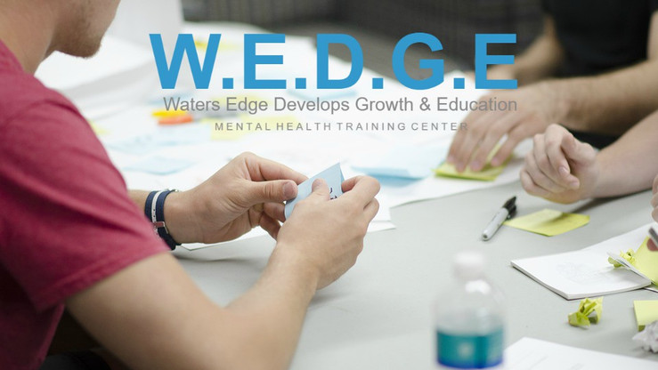 Teen WEDGE Training.jpg