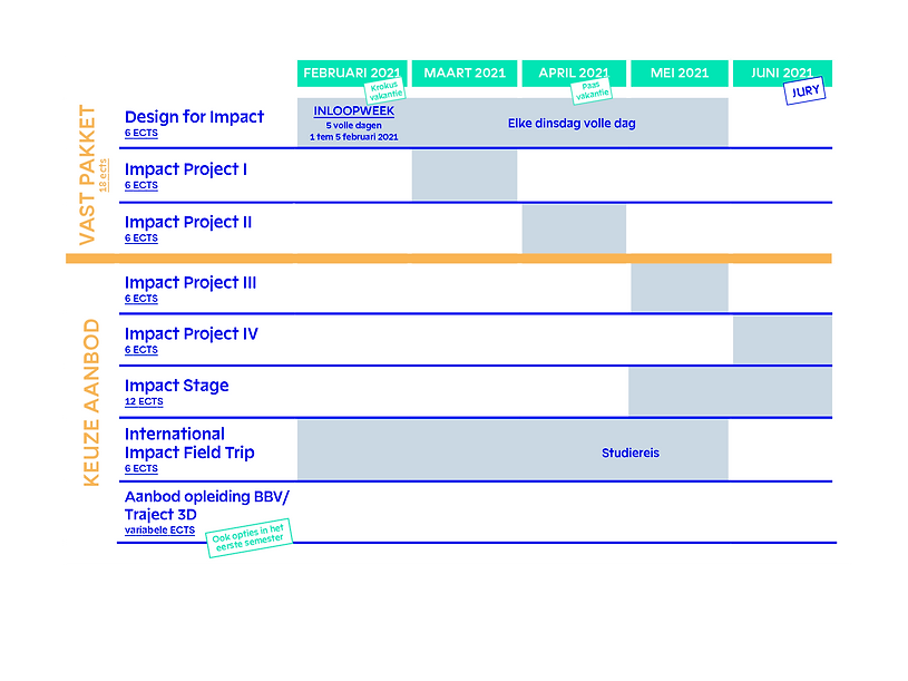 2020-design for impact-schema_1.png