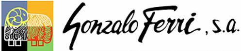 logo gonfer.webp