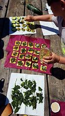 cuisineplantes_Enfants.jpg