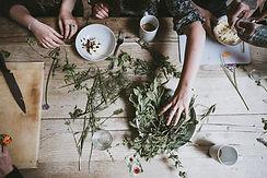 weekngo-plantes.jpg
