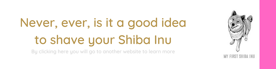 SHAVE SHIBA.png