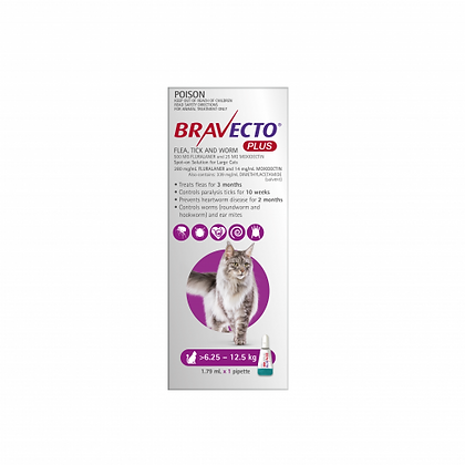 BRAVECTO PLUS CATS PURPLE LARGE 6.25-12.5KG 2 MONTHLY