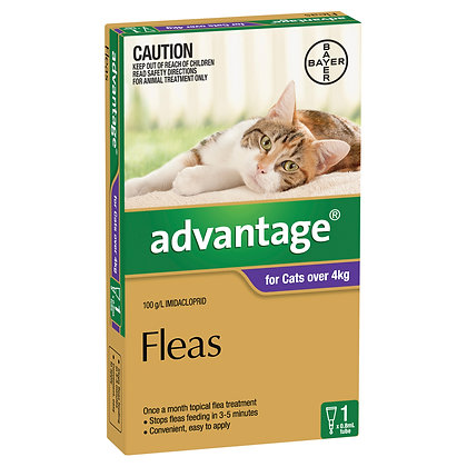 ADVANTAGE CAT 4KG+ PURPLE 1PACK