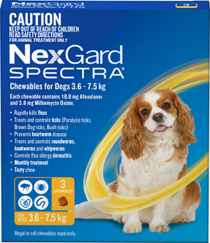 NEXGARD SPECTRA YELLOW 3PACK 3.6-7.5KG