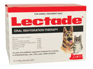 LECTADE SACHETS 12'S  ELECTROLYTE SOLUTION