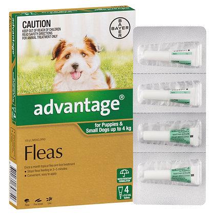 ADVANTAGE DOG 0-4KG GREEN 4 pack