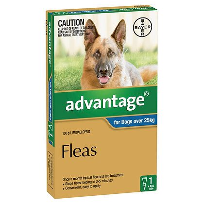 ADVANTAGE DOG OVER 25KG BLUE 1 pack