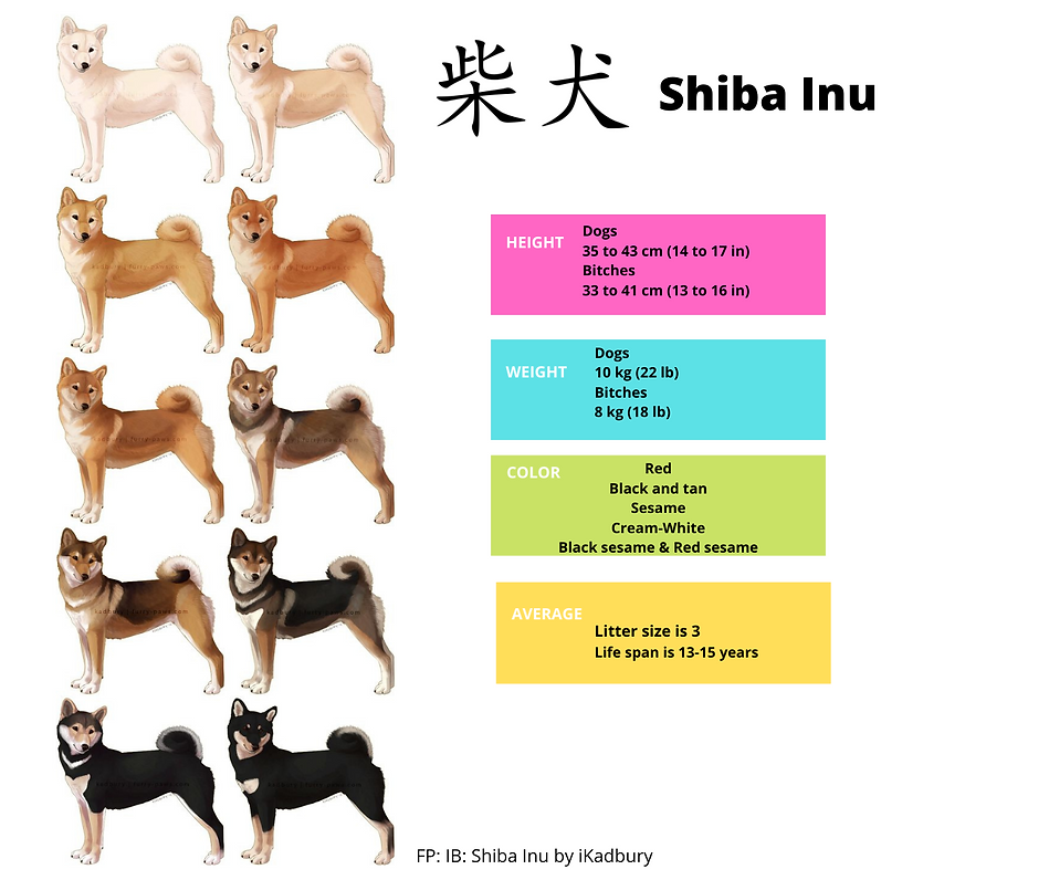 colors of the shibs.png