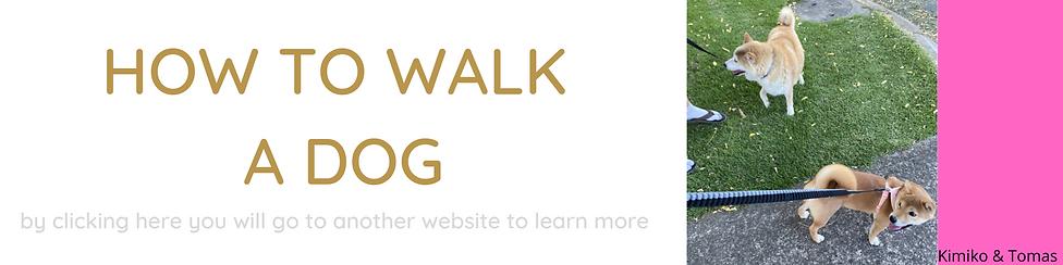 walk dog.png
