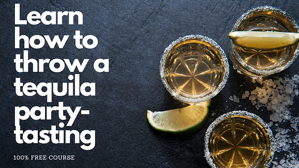 Throw a tequila Party!.png
