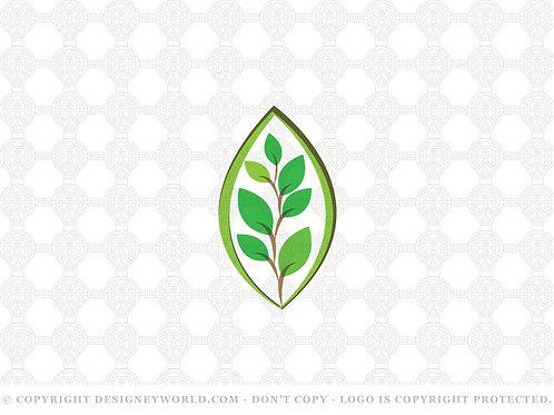 Seeds Grow Logo
