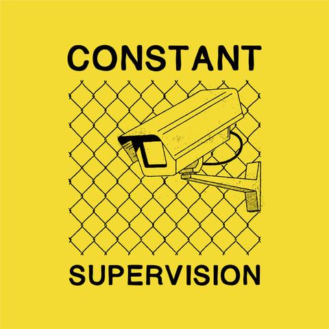 S&D Constant Supervision_v.jpg