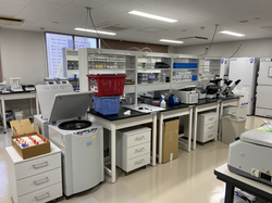 The Ikeda Lab
