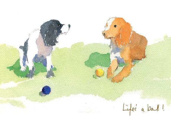 Life's a ball! (FL/68)