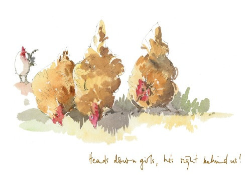 three hens with a cockerel in the background