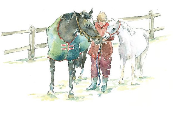 S/29 no caption (horses)
