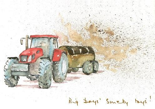 Big boys' Smelly toys (L CH/31)
