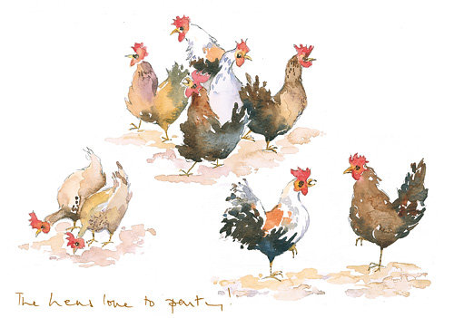 lots of different types of hens