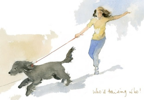 Dog on a lead pulling along a woman