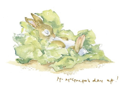 Mr McGregor's day off! Print